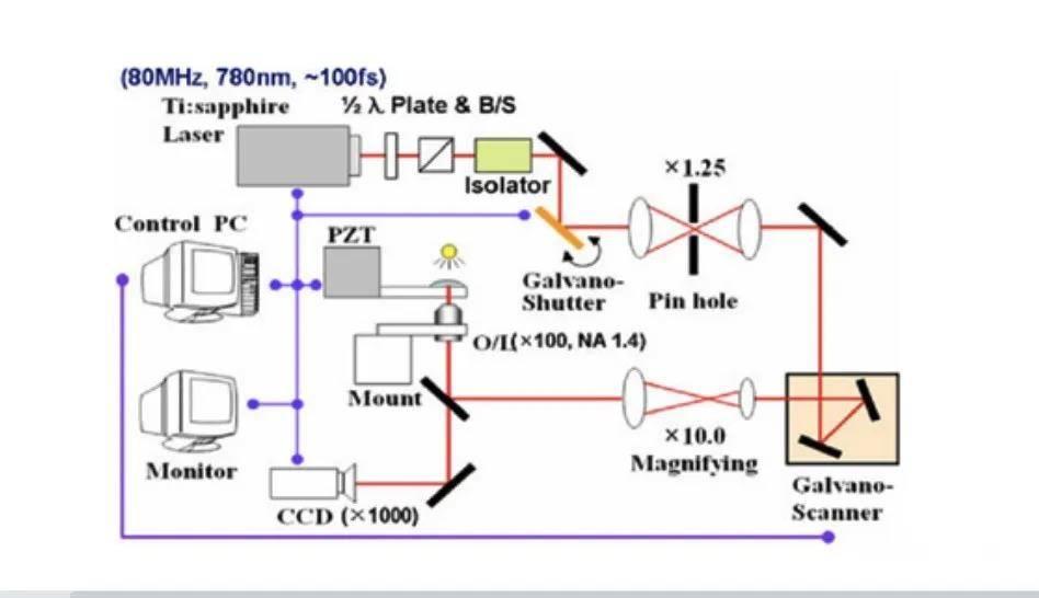改变世界的技术:PμSL与TPP微纳光固化3D打印技术深度解析插图2