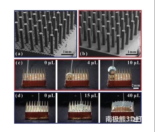 改变世界的技术:PμSL与TPP微纳光固化3D打印技术深度解析插图6