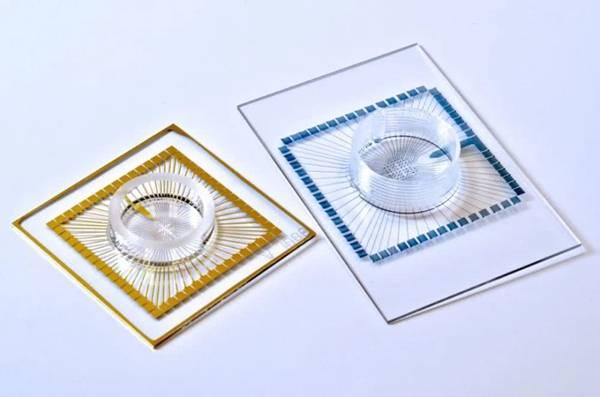 选用导电聚合物液体原材料开发3D打印设计绵软而灵便的人的大脑电级插图3