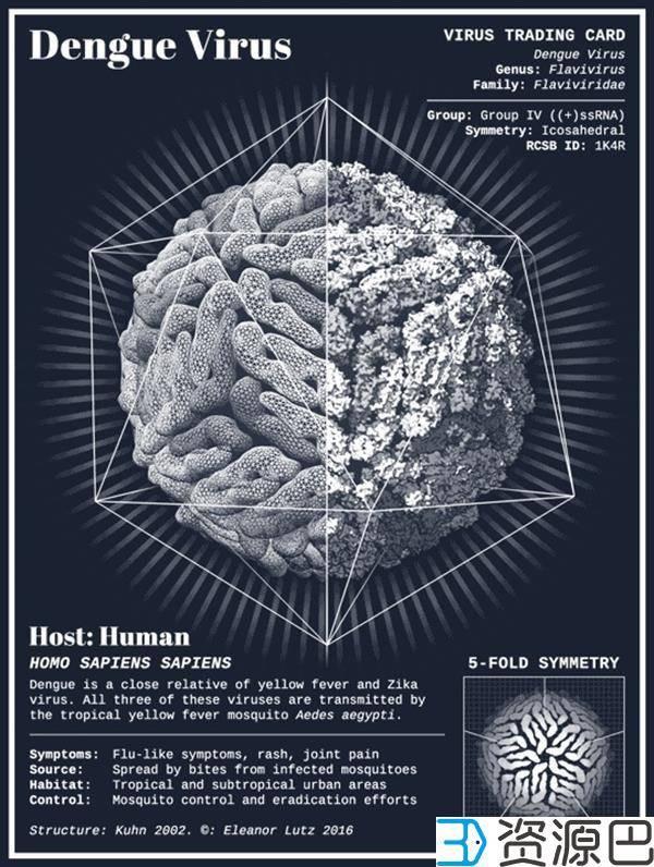 博士生3D打印病毒模型信息卡 美出新境界插图1