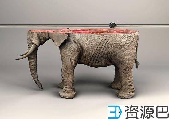 触碰心灵的广告 3D打印濒危野生动物插图1