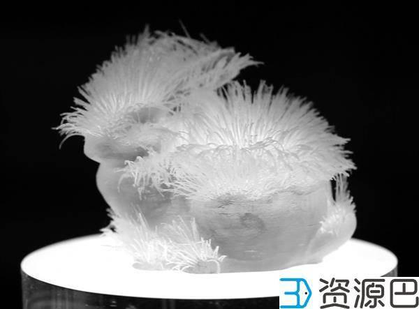 MIT科学家开发出3D打印可编程毛发的技术插图3