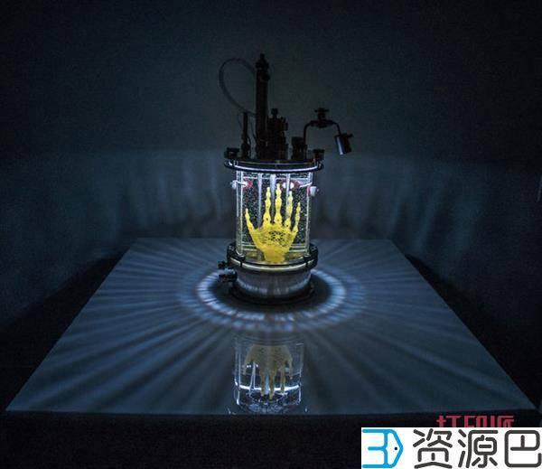 1598407275-06e116a8c23afe2.jpg-插件-艺术家正用3D打印支架和干细胞长出一只人手