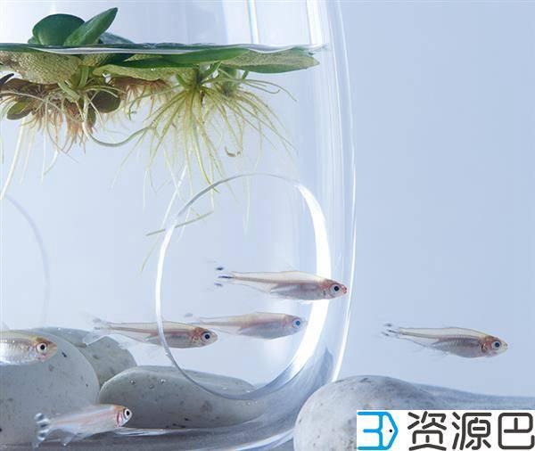 1598493670-685e9ea1c84ab0b.jpg-插件-艺术家用3D打印打造的豪华家用水族馆