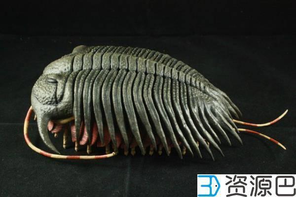 另类萌!古生物学家3D打印三叶虫化石插图1