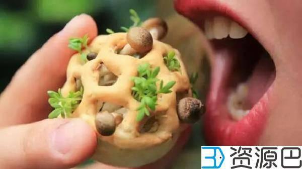 3D打印食物盆栽,饿了就吃掉!插图7