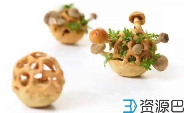 3D打印食物盆栽,饿了就吃掉!插图1
