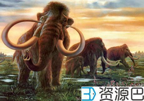 美国华盛顿大学与博物馆合作3D打印史前生物猛犸象模型插图1